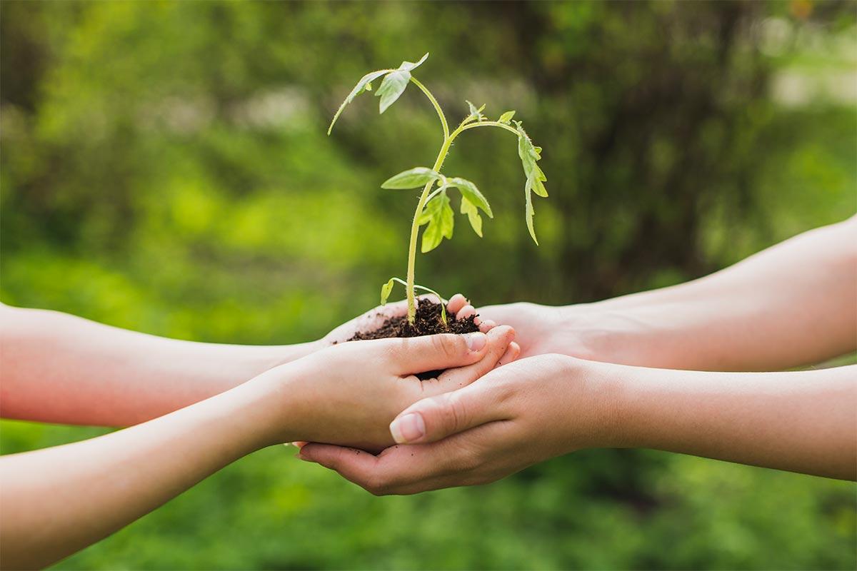 Forma parte de Madrid Ecológico y cambia el mundo